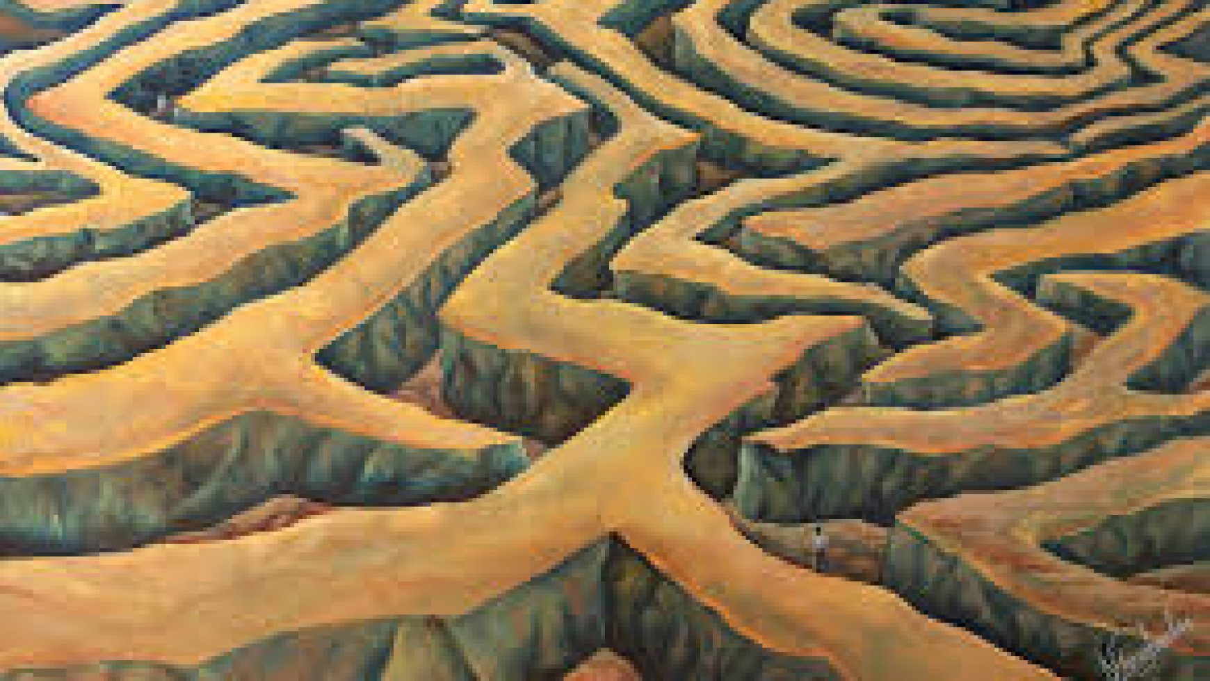 Into the Labyrinth – A devotion for August 27, 2020